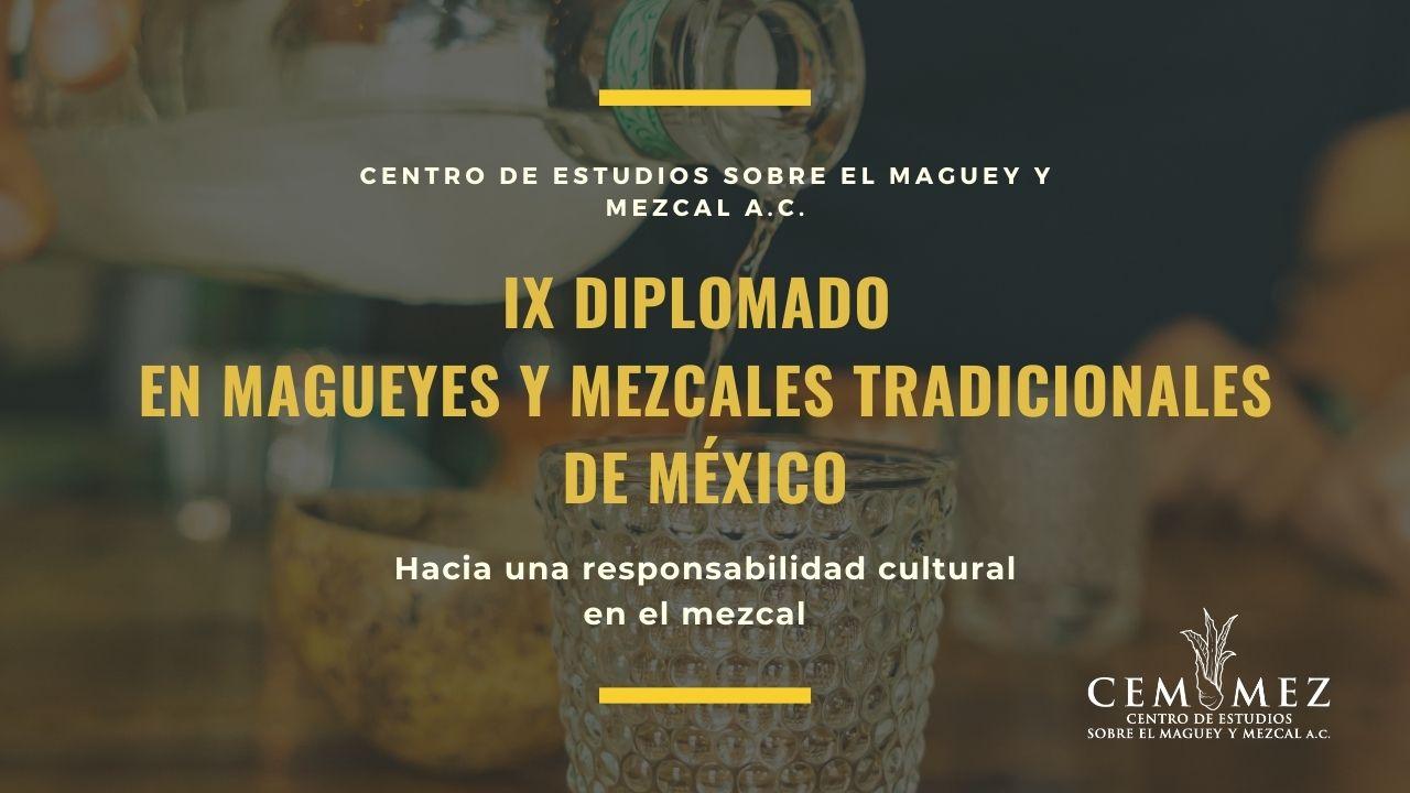 IX Diplomado en Agaves y Mezcales de México