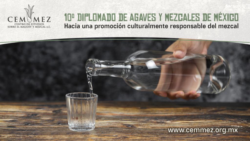 10º diplomado en agaves y mezcales de México
