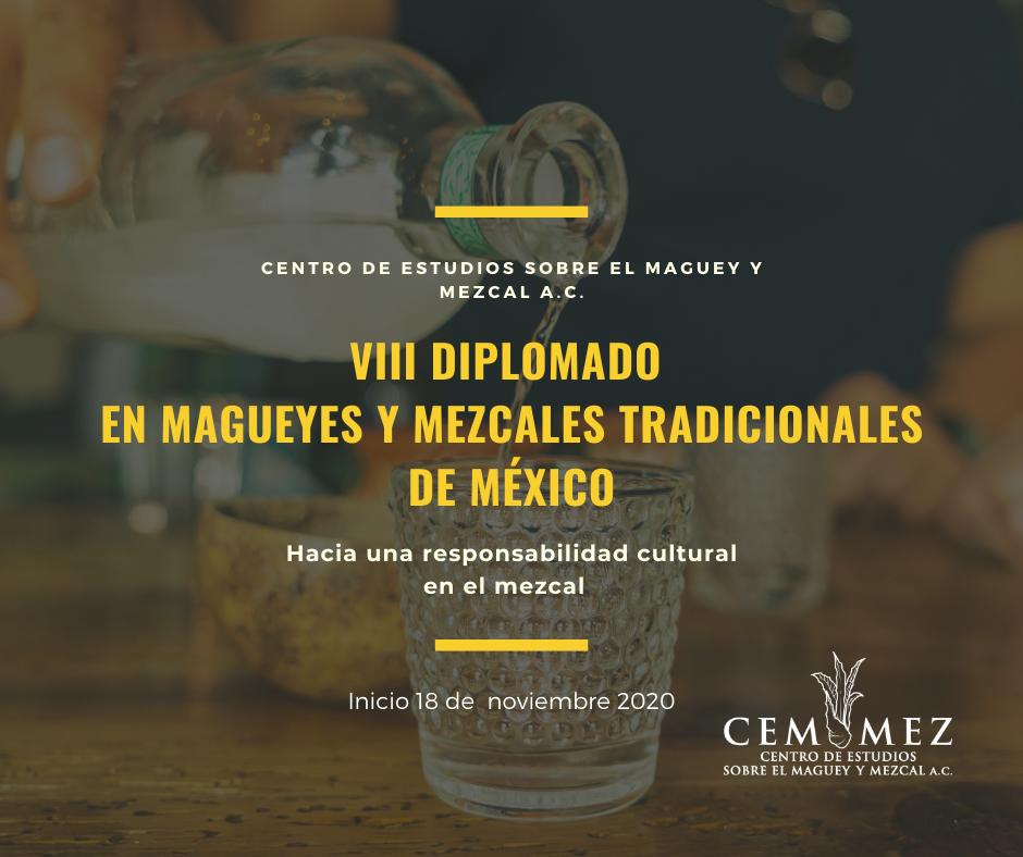 VIII Diplomado en Magueyes y Mezcales Tradicionales de México